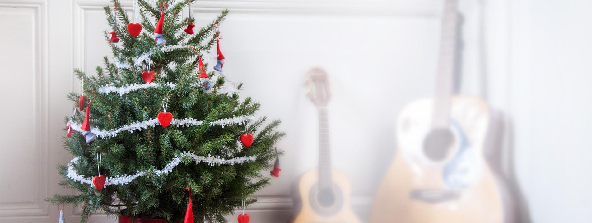 Mini Vrai Sapin De Noel Avis Prix Et Promo